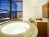 Hoshino Resorts TOMAMU-RISONARE Spa bath