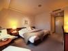 king-hakuba-springs-hotel
