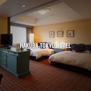 Hakuba Tokyu Hotel Pay 6 Stay 7